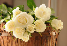 Roses in the basket Royalty Free Stock Photo