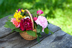 Roses in basket on garden table Stock Image