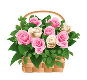 Roses in basket. Vector illustration Royalty Free Stock Image