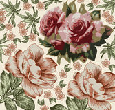Roses pattern. Realistic isolated flowers. Vintage baroque background. Wallpaper. Drawing engraving.  Royalty Free Stock Photos