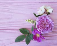 Roses beautiful bouquet frame on a pink wooden background jasmine, magnolia stock photo