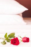 Roses on the bed with pillows background Royalty Free Stock Images
