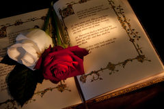 Roses and bible Royalty Free Stock Image