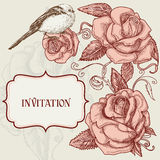 Roses and bird invitation Stock Images