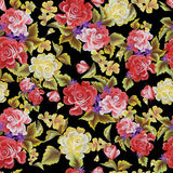 Roses on a black background seamless pattern. Floral pattern with black background seamless Royalty Free Stock Photos