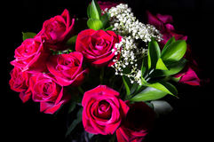 Roses On Black Stock Photos