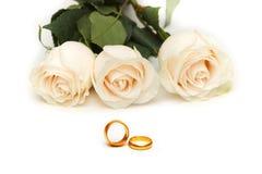 Roses blanches d'isolement Images libres de droits