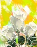 Roses blanches de mastic Photographie stock libre de droits