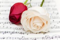 Roses blanches et rouges Photographie stock libre de droits
