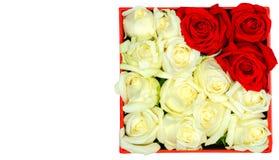 roses blanches et rouges dans une boîte de papier Image stock