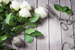 Roses blanches sur le Tableau en bois Photographie stock libre de droits