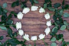 Roses blanches sur un fond en bois Photographie stock libre de droits