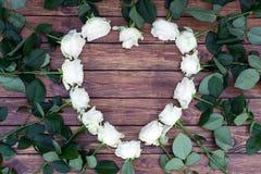 Roses blanches sur un fond en bois Image stock