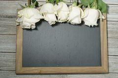 Roses blanches sur une ardoise grise Image libre de droits