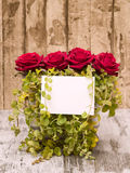 Roses with Blank Card. Roses decoration with blank white card Royalty Free Stock Photos