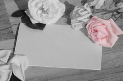 Roses and blank paper Stock Images