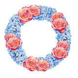 Roses and blue jasmine flower watercolor wreath Stock Photos