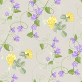 Roses and bluebells flowers Royalty Free Stock Images
