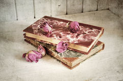 Roses on books Stock Image