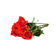 Roses in a Boquet for Love Wedding or Gift. Red Royalty Free Stock Image