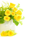 Roses border Stock Images