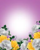 Roses Border Spring Colors. Image and illustration composition Corner yellow, lavender, white roses design for Valentine, Easter or wedding invitation vector illustration