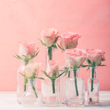 Roses in bottles Royalty Free Stock Image