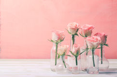 Roses in bottles Stock Images