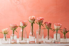 Roses in bottles Royalty Free Stock Photo
