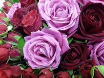 Roses bouqete flowers Royalty Free Stock Image
