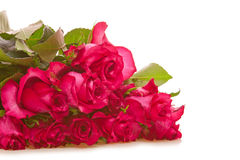 Roses bouquet Stock Image