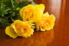 Roses bouquet. Yellow roses bouquet on table stock image