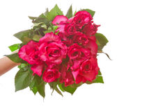 Roses bouquet,gift Stock Image