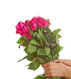 Roses bouquet,gift Stock Photography