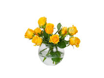Roses bouquet in a glass vase isolated on white background Stock Photos