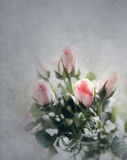 Roses bouquet with old vintage background Stock Photography