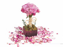 Roses bouquet and petals Royalty Free Stock Image