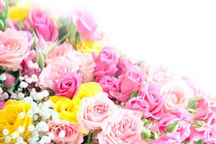 Roses bouquet. Pink  and yellow roses bouquet with free space for text Royalty Free Stock Image