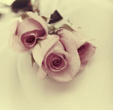 Roses bouquet on silk. Stock Images