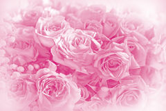 Roses bouquet  on soft background Stock Images