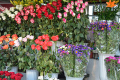 Roses in bouquets for sale Royalty Free Stock Photography