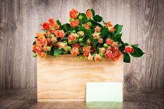 Roses in the box Stock Image