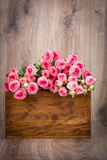 Roses in the box Royalty Free Stock Image