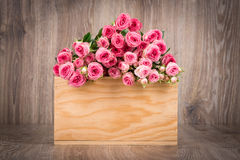 Roses in the box Stock Images