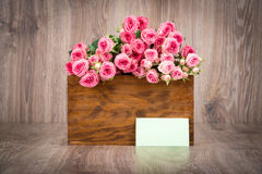 Roses in the box Stock Photos