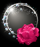 Roses and bubbles Stock Photography
