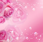 Roses  and bubbles. Pink roses, stars and bubbles Royalty Free Stock Image