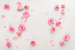 Roses buds and petals scattered on white background. Various pink roses buds and petals scattered on white background, overhead view, copy space Stock Photo