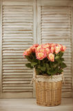 Roses bunch in basket Royalty Free Stock Photo