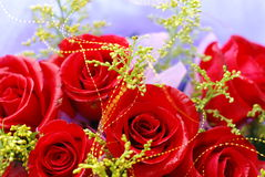 Roses. A bunch of beautiful roses Royalty Free Stock Image
